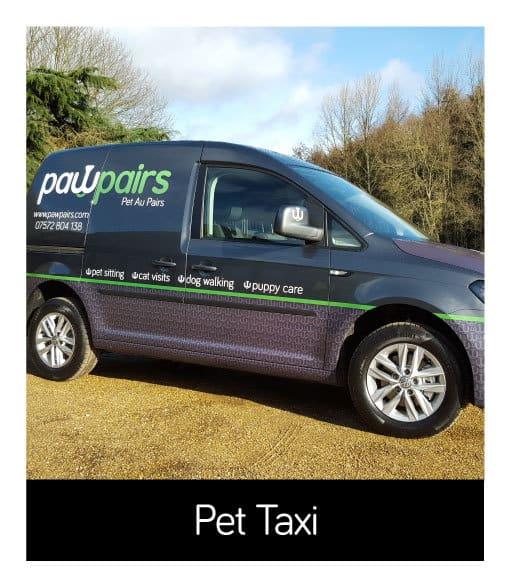 Pet Taxi Services